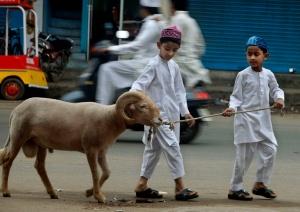 India Eid al Adha